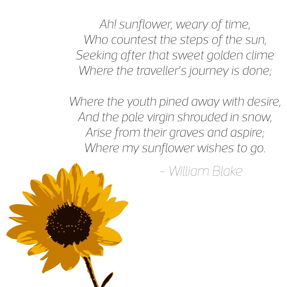 Ah! Sunflower poem by William Blake