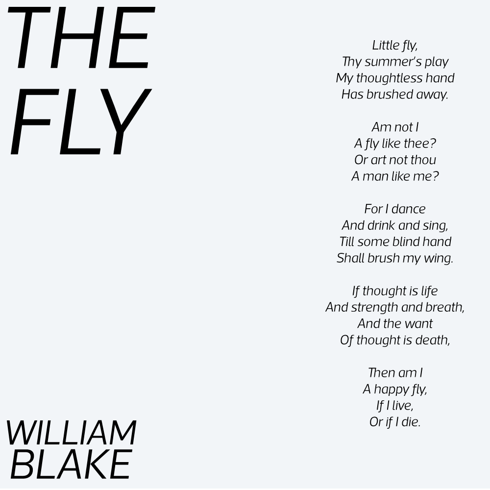 The Fly poem by William Blake