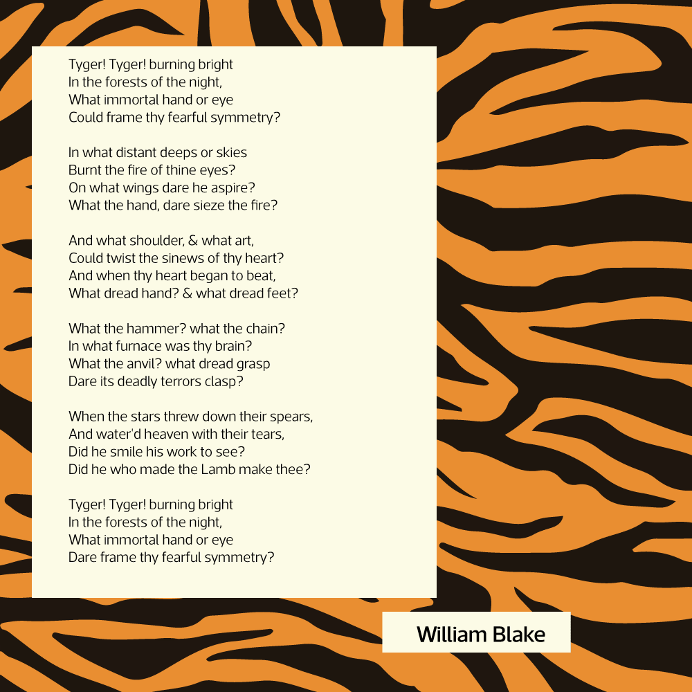 The Tyger Poem